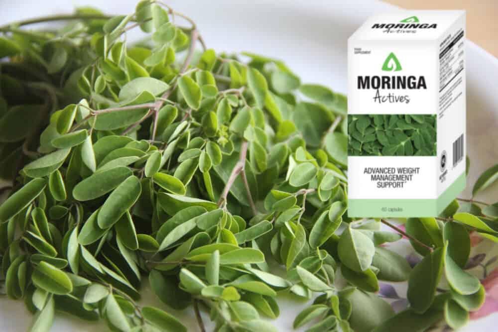 Moringa Actives Zusammensetzung, apotheke